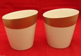 Starbucks Coffee 2012 New Bone China White Gold 2 Coffee Tea Mug Cups  8... - $37.83