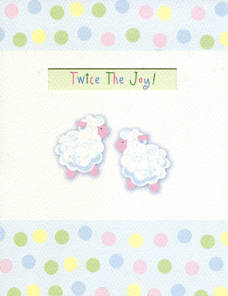 "Greeting Note Card New Baby (Twins) ""Twice The Joy!"""