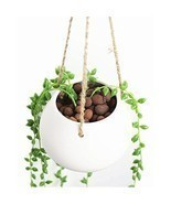 Hanging Plant Flower Pot Mini Ceramic Decorative Planter Vase White Terr... - £11.40 GBP