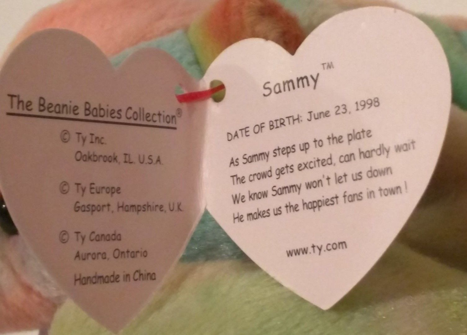 TY BEANIE BABIES 1999 COLLECTIBLE - Sammy the Bear with Hang Tag Error - RETIRED