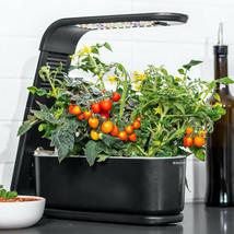 AeroGarden Sprout Black 3-Pod Garden + 3 Pod Seed Kit - £70.46 GBP