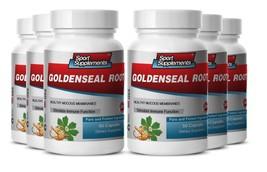 Goldenseal Herb Powder - Goldenseal  Hydrastis 520mg - Anti Aging Supplements 6B - $54.40