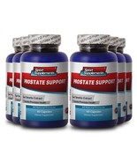 Beta Sitosterol - Prostate Support 1600mg - Strengthen The Thyroid Gland 6B - $62.32
