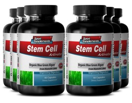 Wheat Grass Tablets - Stem Cell Activator 500mg - Lower Blood Pressure C... - $54.40