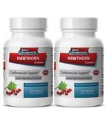 Hawthorn Berry Powder - Hawthorn Leaf Extract 665mg- Reduce Cholesterol ... - $25.69