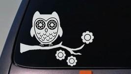 Owl sticker decal car window vinyl *A021* - $3.39