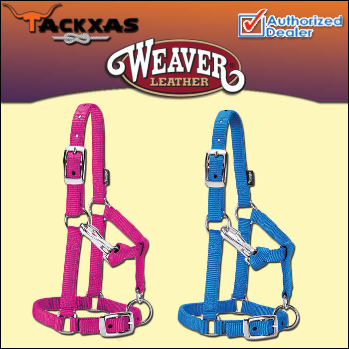 WEAVER NYLON MINIATURE HORSE ADJUSTABLE CHIN AND THROAT SNAP HALTER AVERAGE, used for sale  USA