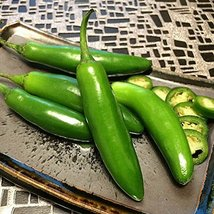 2000 seeds, or 1/2 oz - Serrano Pepper - Spicy Heirloom Easy Gro Chili - $21.78