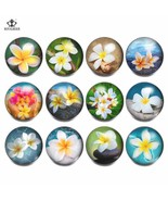 RoyalBeier 12pcs/lot  Style Mixed Glass Charms 18mm Snap Button For 20mm... - $13.36