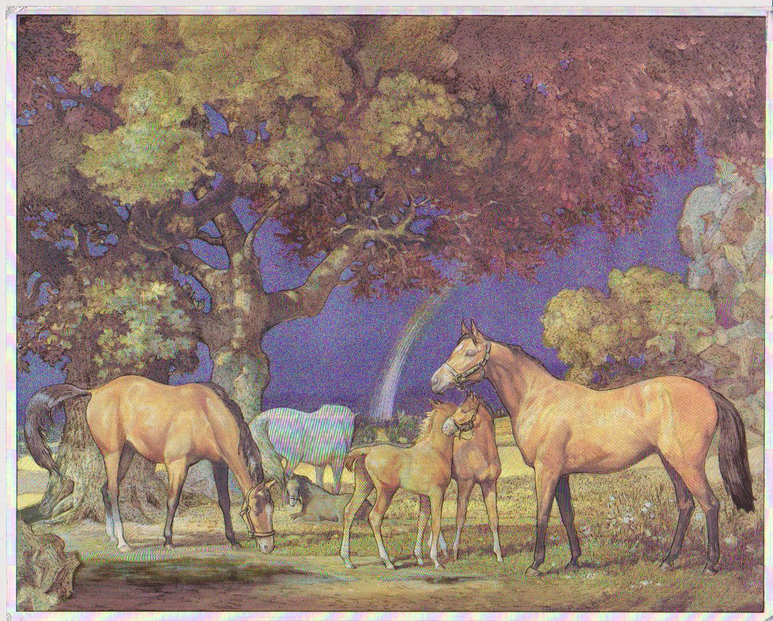 Primary image for Horses After The Storm Vintage 11X14 Matted Animal Foil Print
