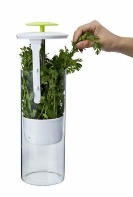 Herb Keeper Storage Asparagus Celery Parsley Container Extra Large Saver NEW image 4