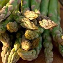 50Pcs Asparagus Mary Washington Vegetable Seeds Asparagus Officinalis Seed - $19.84