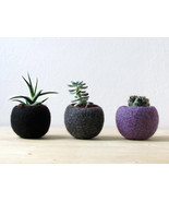 Felt succulent planter collection / black grey purple / Succulent terrar... - $49.00