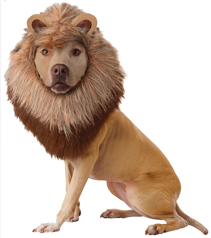 Lion Mane Dog Costume Lions Pet Wig For Dogs Plush Headpiece Size Medium