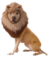 Lion Mane Dog Costume Lions Pet Wig For Dogs Plush Headpiece Size Medium  - $319,84 MXN