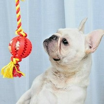 New Dog Toys Pet Cotton Knot Rope Dog Toy Puppy Chewing Ball Toy Bite Re... - $11.64