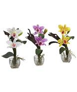 Mini Cattleya Orchid Arrangement (Set of 3) - $83.26