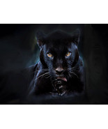I NEED MONEY FAST SPELL PANTHER SPARTACUS SPIR... - $100.99