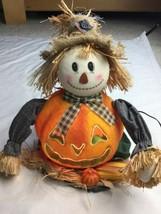 fiber optic scarecrow harvest thanksgiving november pumpkins colorful - £29.70 GBP