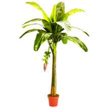 6' Banana Silk Tree (Real Touch) - €119,22 EUR