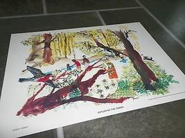 1962 Vintage Children's Print Exploring The Woods Shirley Hirsch - $7.92