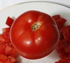 25 Seeds Abe Lincoln Tomato - $18.81