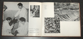 Vintage 1952 Book How Israel Governed Illustrated Hebrew English French Photos image 6