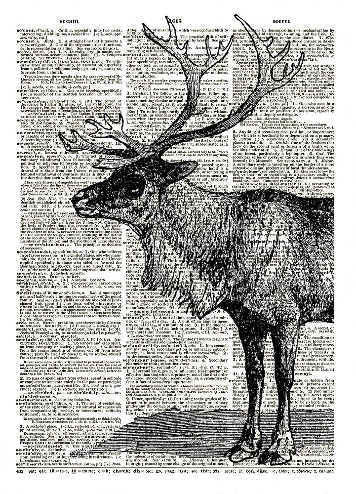 REINDEER Buck with Antlers Vintage Dictionary Art Print No.