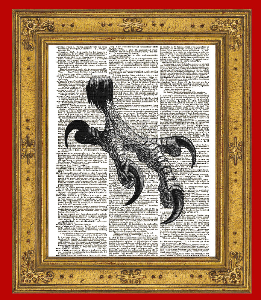 Large EAGLE TALON Bird Claw Vintage Dictionary Art Print No. 0106