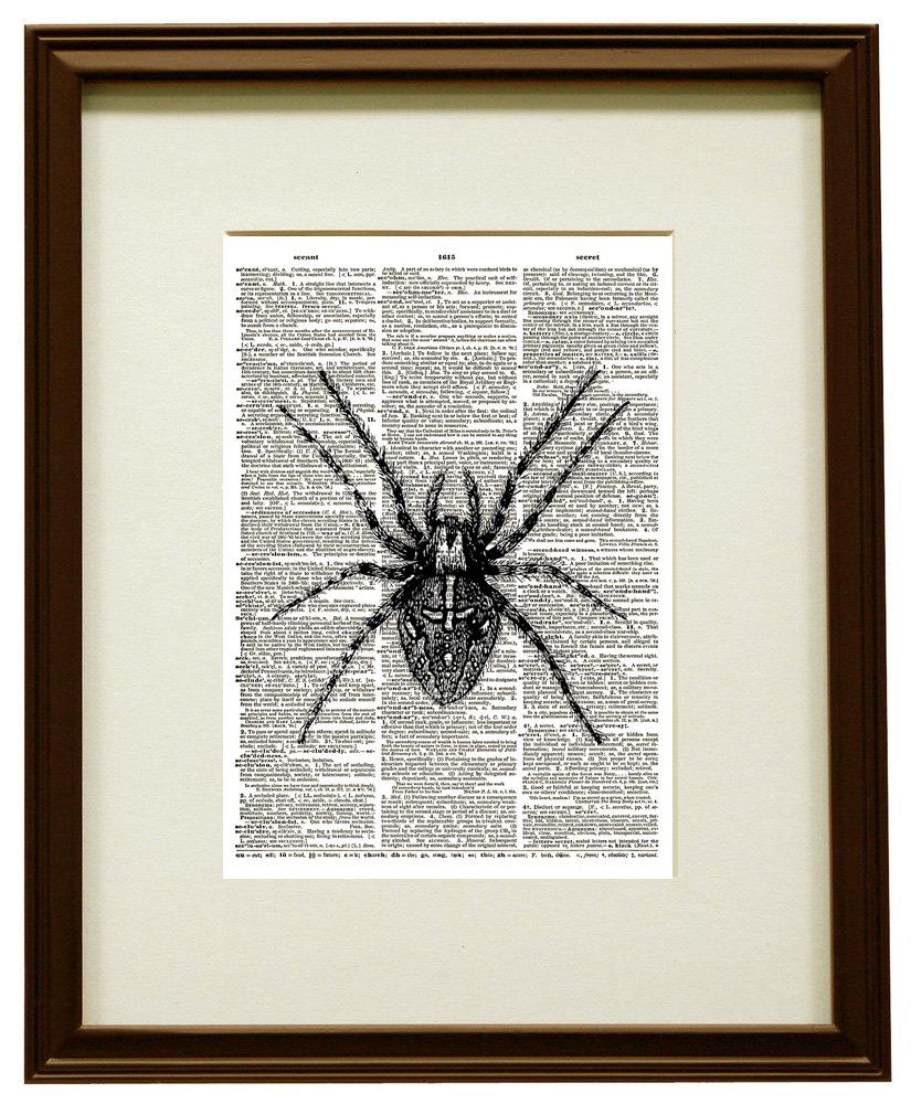 Giant SPIDER Antique Artwork Vintage Dictionary Art Print No. 0110
