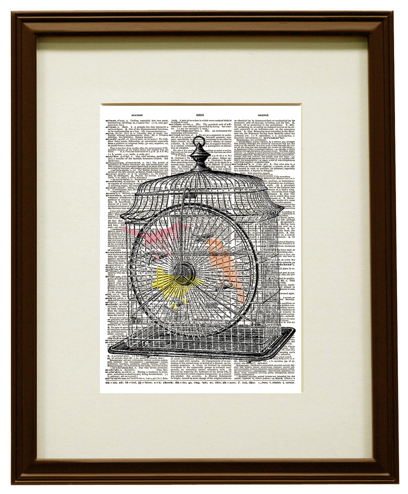 BIRDS in BIRD CAGE Pink, Yellow, and Orange Colors Vintage Dictionary Art Print