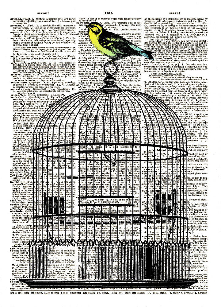 Color LITTLE BIRD on Bird Cage Vintage Dictionary Art Print No. 0112