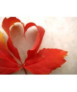 SIMPLE-LOVE SPELL POWERFUL BY HAMJADAH - $49.00
