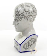 Vintage Porcelain Phrenology Head * Free Air Priority Shipping Worldwide - $129.00