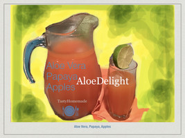 AloeDelight Deliciousness All Day EnergyBoost, 4pk 16oz bottles. Buy2ShipsFree. - $19.95