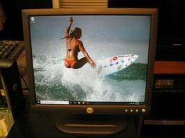 Dell E173FPc 17 Inch Flat Panel Color Monitor Revision A02 - $34.60