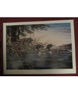 LOON wildlife art print MINNESOTA MEMORIES II - Dean Johnson - Unsigned - $12.00