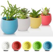 5PCs/lot 5Color Plastic Flower Pot Succulent Plant Home Office Garden Decoration - $9.99