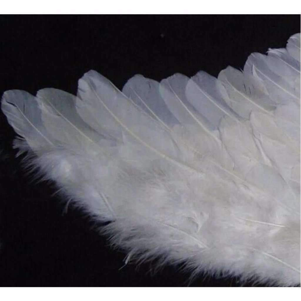 Angel Feather Wing Cosplay Props For Adult