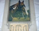 Brn horse 01 thumb155 crop