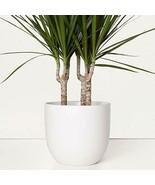 "Ceramic Planter 12"", 10"", or 7"" Large Plant Pot, Hand Glazed Flower Pot ... - $59.00+"