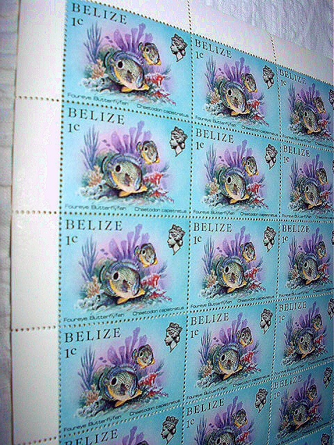 MINT SHEET OF 50-1984 BELIZE 1cent stamps-BUTTERFLYFISH