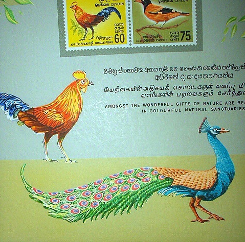 RARE SET-TYPICAL BIRDS OF CEYLON-COLORFUL-MINT!!!