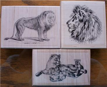 LOT OF 3 RUBBER STAMPS LION, LIONESS CUBS NEW RELEASES