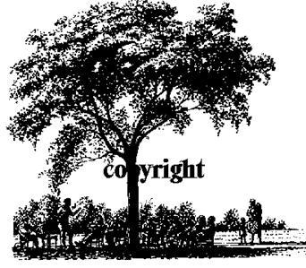 GATHERING UNDER TREE NEW RELEASE mounted rubber stamp