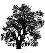 LARGE OAK TREES NEW RELEASE mounted rubber stamp - $8.50