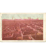 The Union Stock Yards Chicago Illinois Vintage 1906 Post Card - $6.00