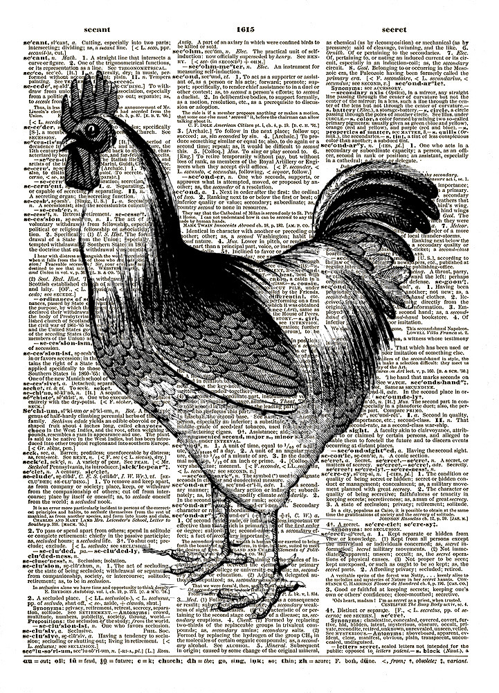 Proud ROOSTER Farm Animal Bird Vintage Dictionary Page Art Print No. 0160