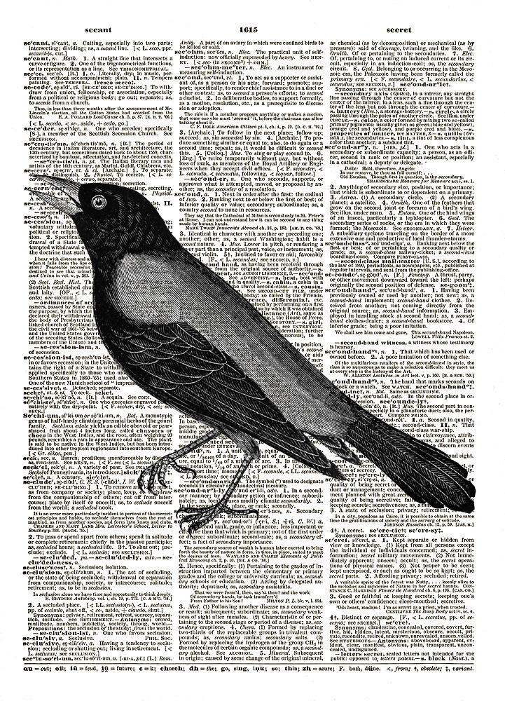 BLACKBIRD Flying Animal Vintage Dictionary Page Art Print No. 0166