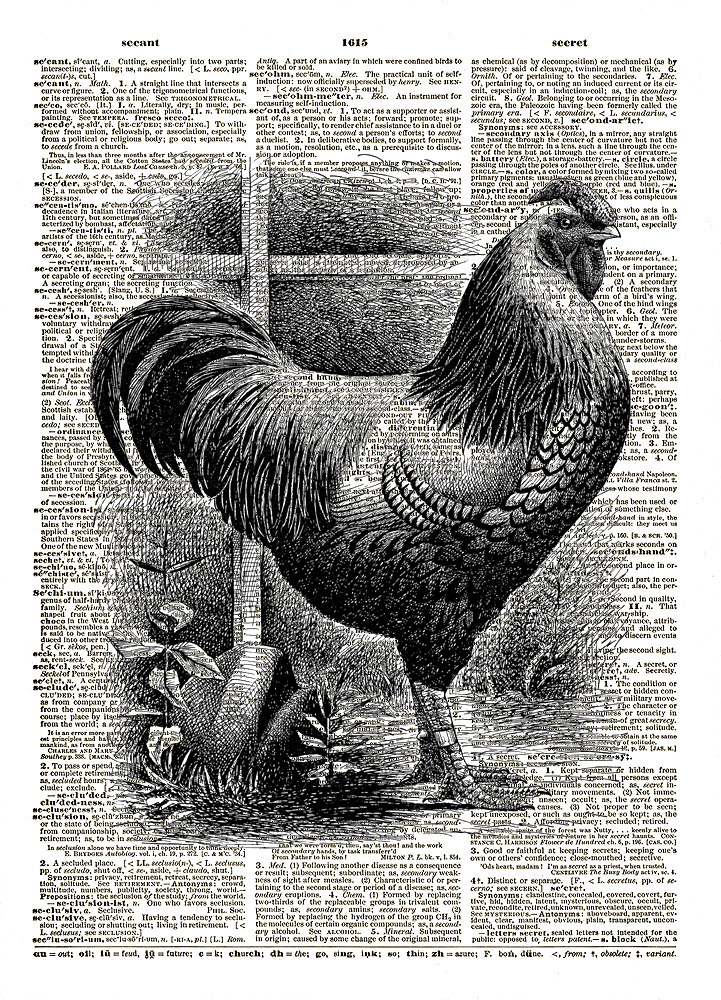 Rooster Chicken Farm Animal Bird Vintage Dictionary Art Print No. 0168